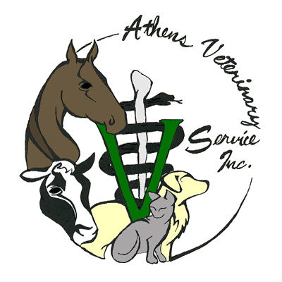 horse-cat-cow-dog-shown-on-logo